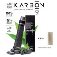 Crema Colorante Capelli Con Carbone - CB10 - Biondo Platino Carbone - 100 ml - EchosLine