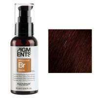Pigments - Bronze - Pigmenti Ultra Concentrati - 90 ml - AlfaParf Milano